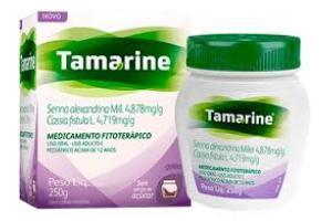 Geleia Tamarine Contém 250g Sem Açúcar